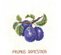 Plum Tile - 12-961C - 26ct