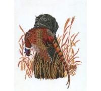 Retrieving a Pheasant - 12-883C - 26ct