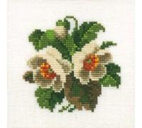 White Anemones Posy - 14-116C - 26ct