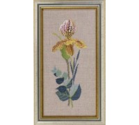 Yellow Orchid Study - 14-156C - 26ct