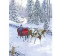 Winter Pony Chart - 09-2557