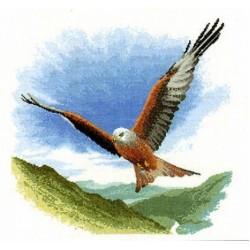 Flights Of Fancy by John Clayton