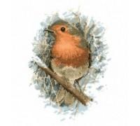 Robin Redbreast by John Stubbs