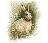 Brown Hare by John Stubbs