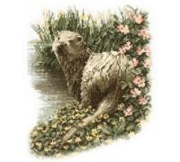 Otter by John Stubbs