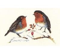 Winter Robins