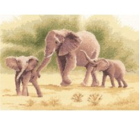 Elephants by John Clayton