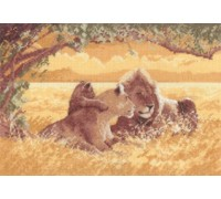 Lions by John Clayton