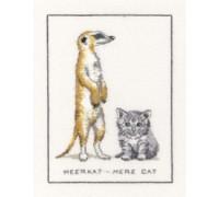 Meerkat - Mere Cat