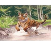 Tiger by John Clayton
