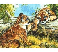 Baby Cougars Chart - 01-1589 - Chart Only
