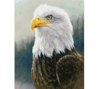 Bald Eagle Chart - 09-1926 - chart only