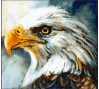 Eagle II Chart - 00-1626 - chart only