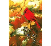 Early Light Cardinal Chart - 06-2225 - Chart Only