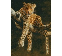 Hypnotic Leopard Chart or Kit