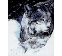 Lynx Chart or Kit