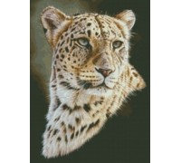 Persian Leopard - Chart or Kit
