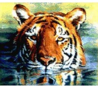 Water Tiger Chart or Kit