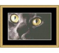 Cats Eyes Charts - 05-2359
