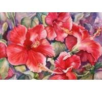 Hibiscus Chart - 03-2660