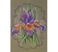 Iris Sketch - 90-5333 - 14ct