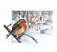 Winter Robin Scene