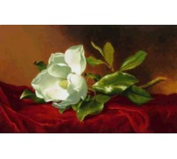 A Magnolia on Red Velvet by Heade