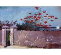 A Wall, Nassau by Winslow Homer