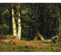 Fallen Birch by Worthington Whittredge