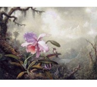 Heliodore's Woodstar and a Pink Orchid by Heade