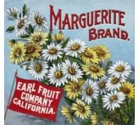Marguerite Brand