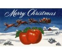Merry Christmas Brand Apples