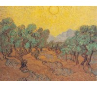 Olive Fields by Vincent van Gogh