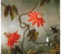 Passion Flowers and Hummingbirds (detail) by Heade