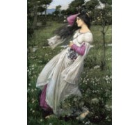 Windflowers by Waterhouse