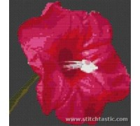 Morning Glory Flower Kit - SKU-NAT-0002-K - 14ct