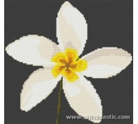 Plumeria Flower Cross Stitch - SKU NAT-0007-K - 14ct