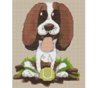 Springer Spaniel Puppy Caricature - PET-0107-K