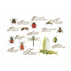 Insects and Wildlife Cross Stitch