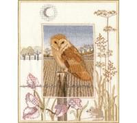 Barn Owl by Derwentwater - WIL3