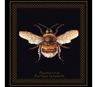 Bumble Bee - Black Collection - 3018.05