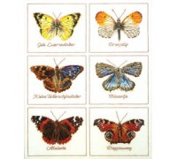 Butterfly Species Sampler