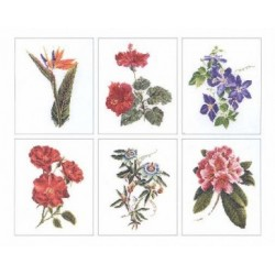Floral Studies Cross Stitch
