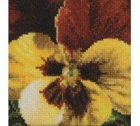 Gold and Brown Pansy - 462A - 18ct
