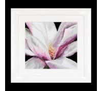 Magnolia by Thea Gouverneur - 495