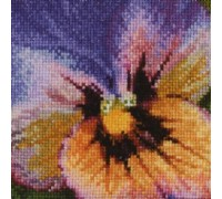 Purple, Pink and Orange Pansy - 454A - 18ct