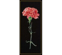 Red Carnation on Black - 465.05 - 18ct aida