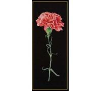 Red Carnation on Black - 465.05 - 18ct aida