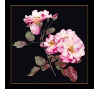 Rosa Leersum - Black Collection - 412.05