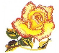 Single Red and Yellow Rose